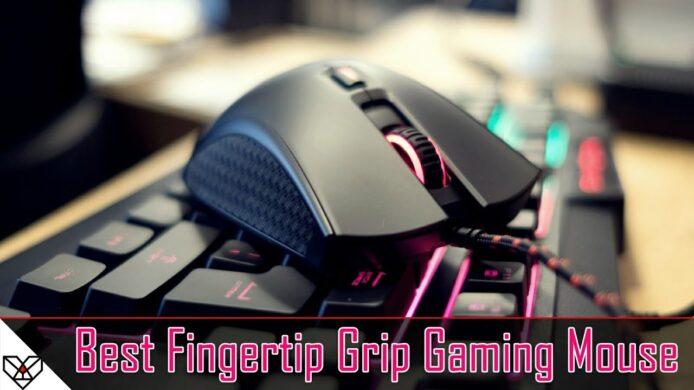 Best Fingertip Grip Mouse For Gaming