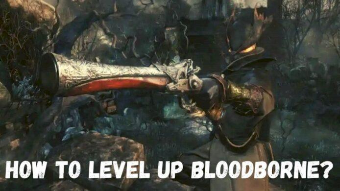 Level Up in Bloodborne